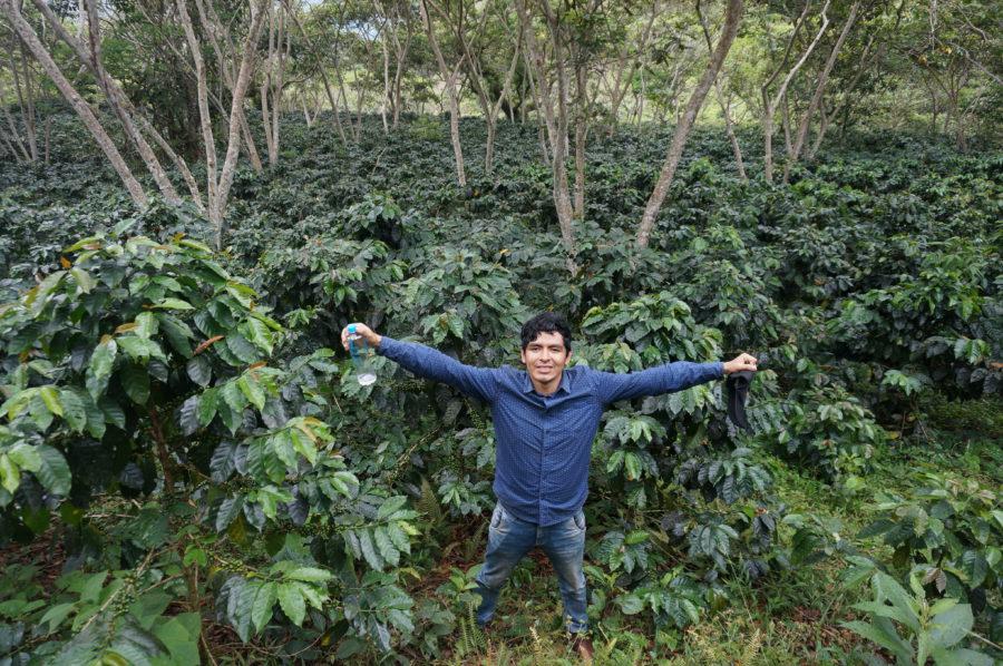 Monzón – Coca und Kaffee in Peru Vorschaubild